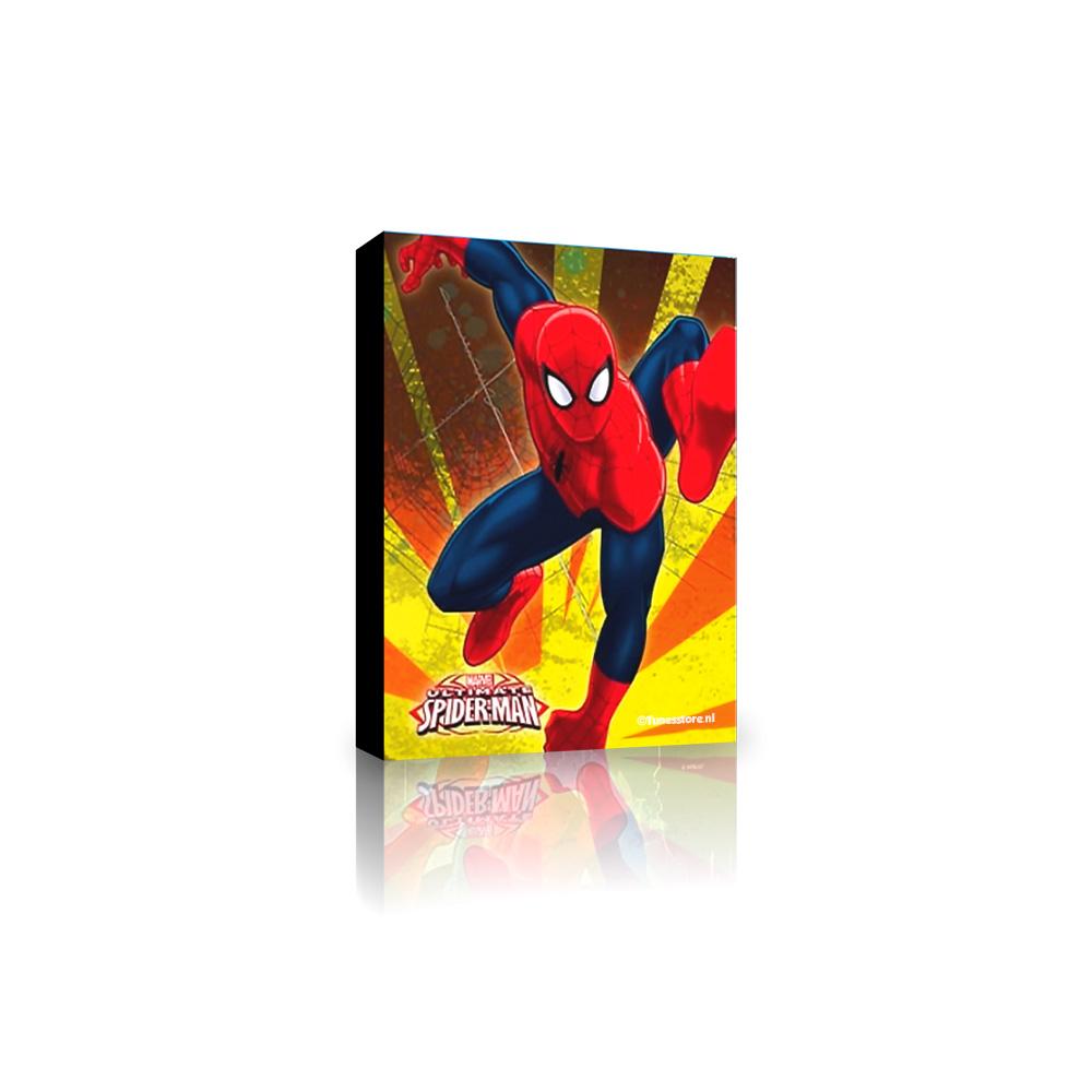 Spiderman slaapkamer canvas