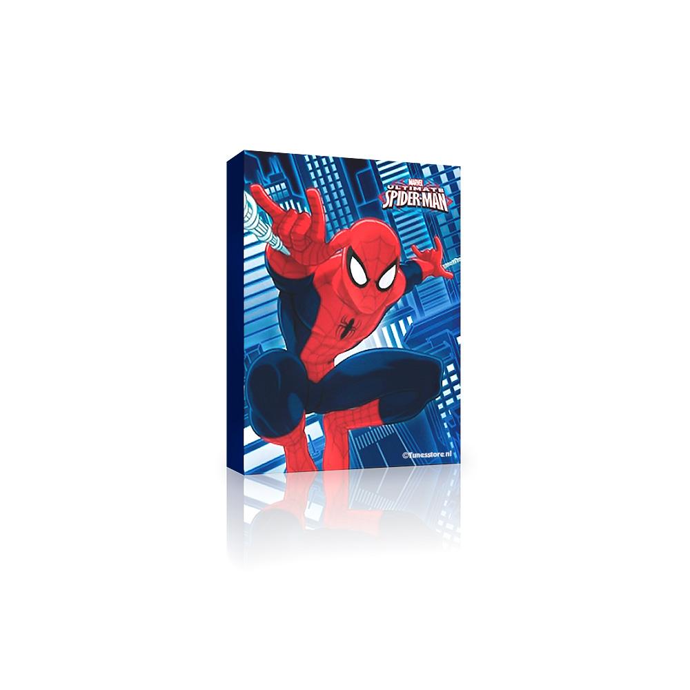 Spiderman op canvas voor op de slaapkamer